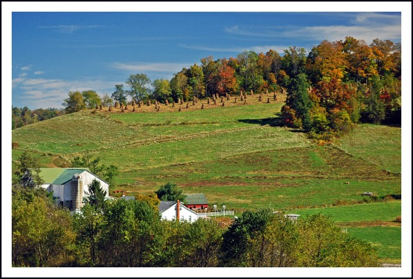 Our rural landscapes remain unbeaten.