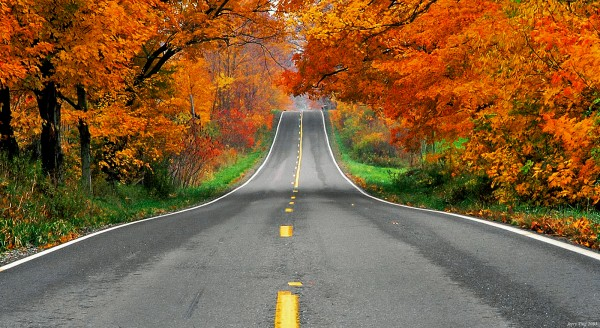 Take a Sunday drive during the Fall.