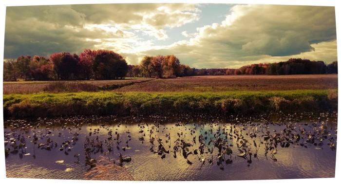2) Chippewa Lake