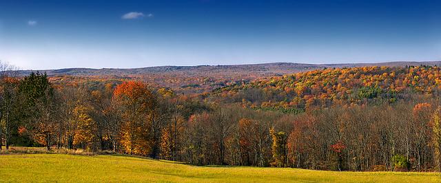 11. Pennsylvania has all four seasons.