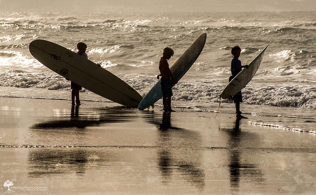 """4. """"Tide Watchers"""" by Zach Frailey"""