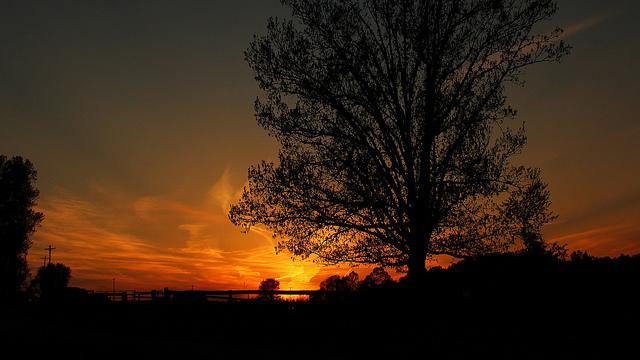 20. Light bleeds from the horizon in Glenmoore.