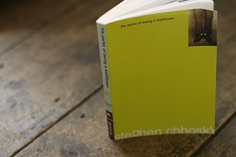2. The Perks of Being a Wallflower, Stephen Chbosky