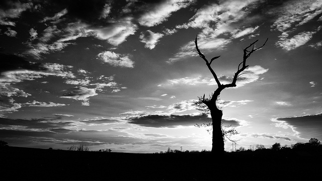 21. Even in black and white, this Monroe Township sunset is breathtaking.