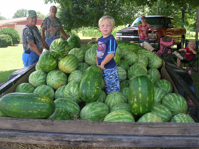 24. You've bought watermelons, peaches, and vegetables off the side of the road