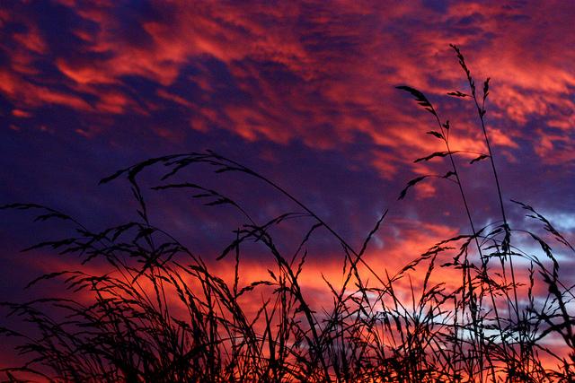 12. Blazing country sky