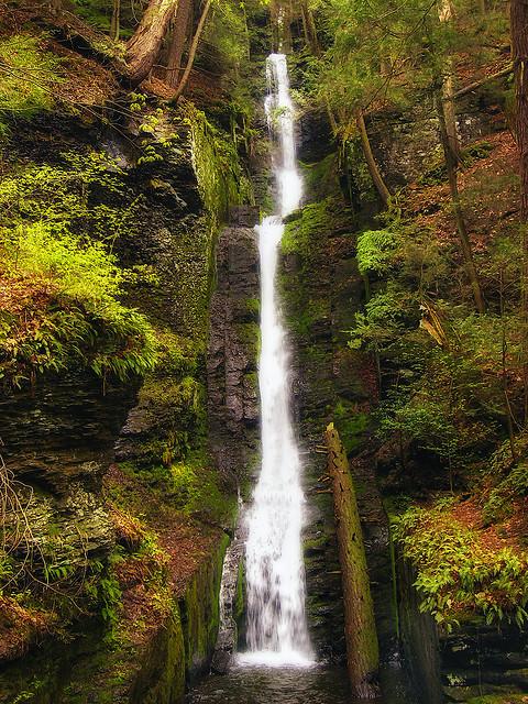 5) Horsetail, Silverthread Falls, Pike County