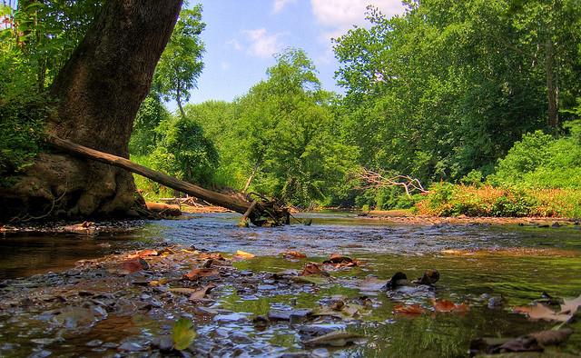 5. Raccoon Creek State Park, Beaver County