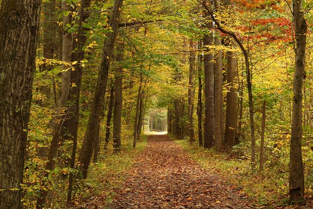 6. Jacobsburg State Park, Northampton County