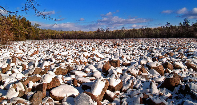 The Boulder Field at Hickory Run State Park is a national nature landmark that was created during the last ice age. The field consists of huge boulders as far as the eye can see-- not your typical hiking experience.