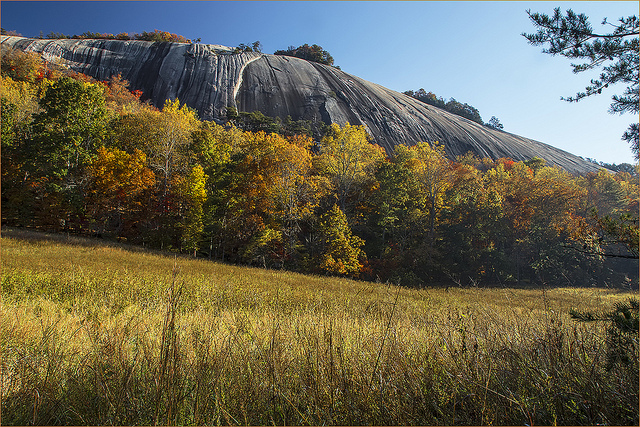 3. Pitch a tent at one of our many State parks