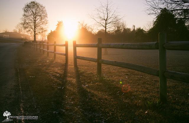 "9. ""Monday Fog"" by Zach Frailey"