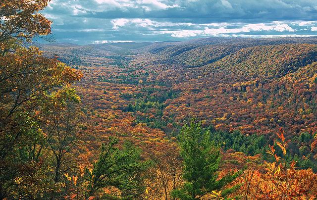 8. Top Mountain Trail, Naked Mountain, Union County