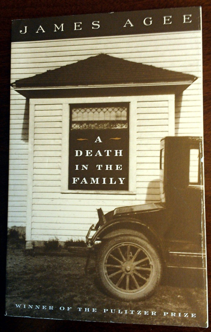 "1) James Agee crafted a beautiful depiction of human heartache and grief in his novel, ""A Death in the Family."" The 1957 classic set in Knoxville, TN was published post-mortem and the swirling epic of southern style humanity  is sure to keep you buying boxes of tissues."