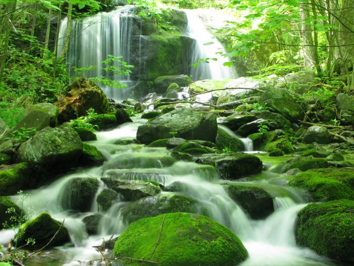 2. Apple Orchard Falls, Botetourt County
