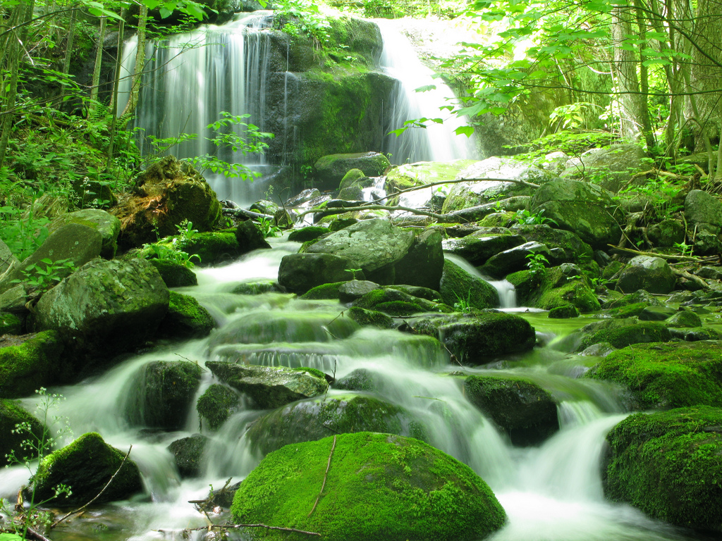 These 19 Virginia Waterfalls Are Absolutely Breathtaking