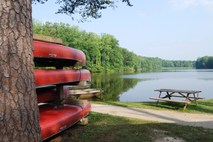 17. Get outside!! Take a hike, take a picnic or just take a break at Virginia State Parks.