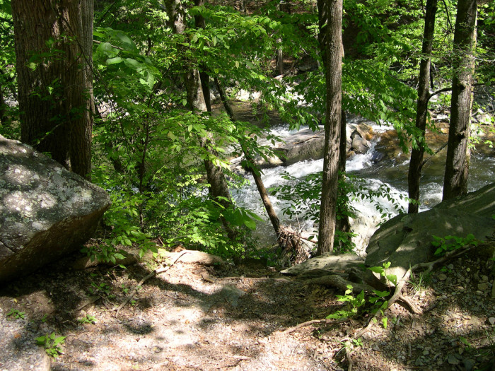 4) Take a day trip to the Cherokee National Forest in the heart of Appalachia. There are more than 600 solid miles for you to explore, so make it a date or a fun family trip.