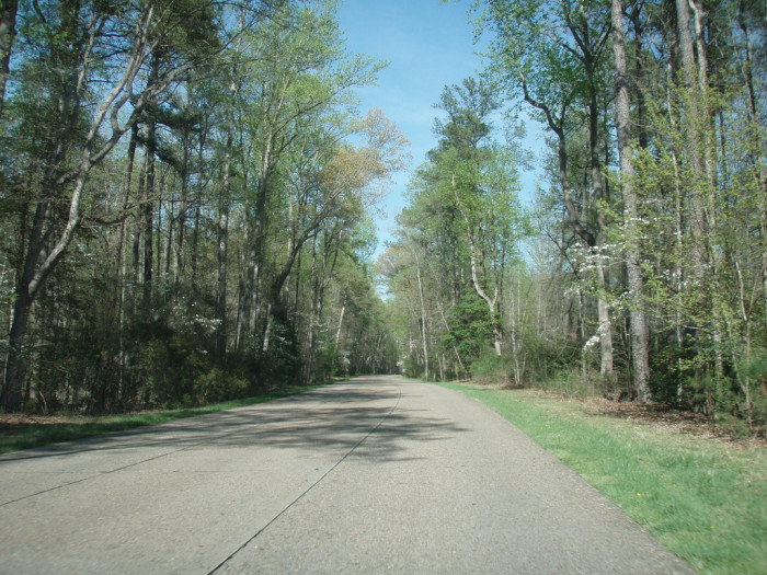 4. Colonial Parkway Murders: A Cold Case (York, Williamsburg and James City)