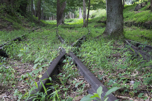 5) These forgotten tracks are somewhere in Nuttallburg, West Virginia, which is just upriver from the New River Gorge Bridge.