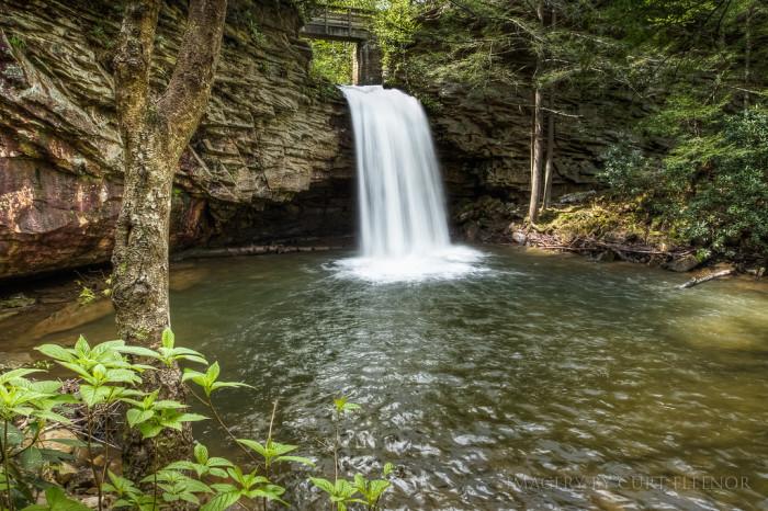 "5. ""Little"" Stoney Creek Falls, Scott County"