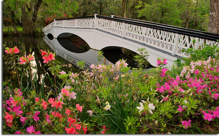These 20 jaw dropping places in south carolina will blow you away only in your state for Magnolia gardens charleston sc
