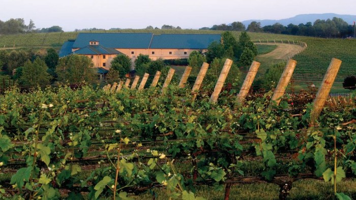 23. While you're in the car, take a drive down the Uwharrie Mountains Wine Trail. It covers 42 miles with four vineyards where the land flows for miles into vast hills as mountains sit in the distance.It's a beautiful drive, just make sure to bring a DD!