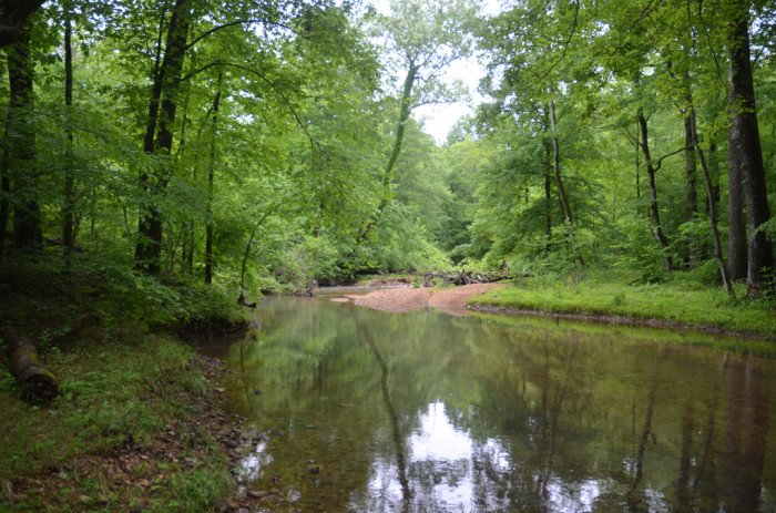 11) The Natchez Trace State Park is a stunning addition to the old Natchez Trace roadway, boasting 13 miles of trails with significant distance range to fit your hiking desires.