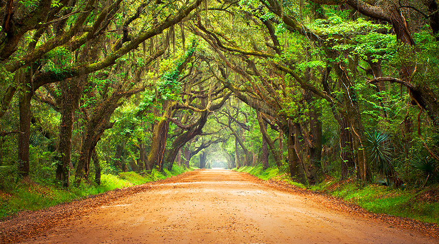 These 20 Jaw Dropping Places In South Carolina Will Blow