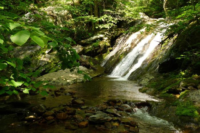 15. Upper Falls at Doyle's River, Waynesboro