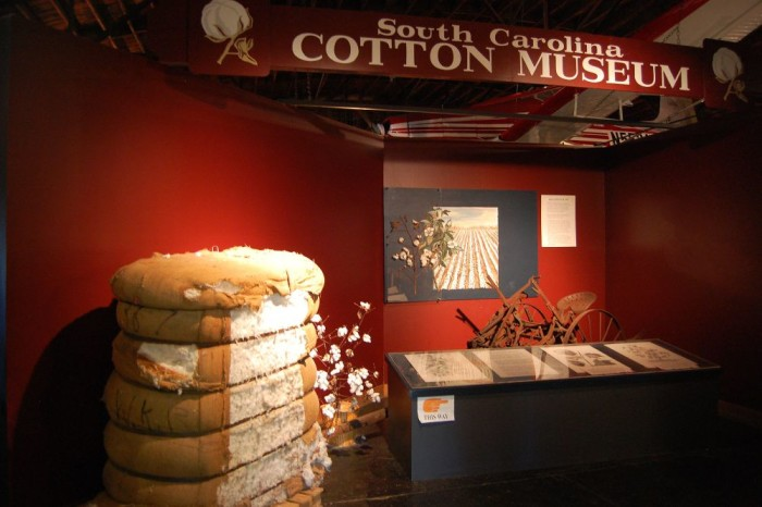 3. Learn about cotton in a whole new way.