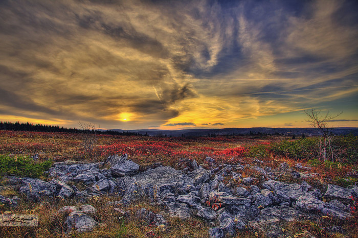 2) Dolly Sods Wilderness, located in Cabins, WV.