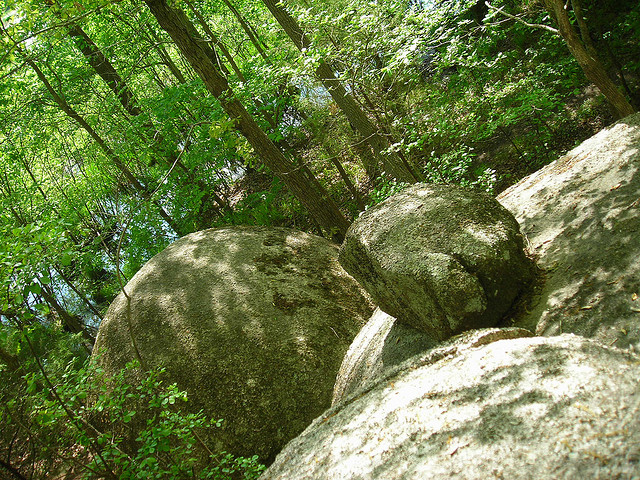 6) Forty Acre Rock of Kershaw, SC: A part of Flat Creek Preserve, this 14-acre granite outcropping can provide hours of hiking and family fun.
