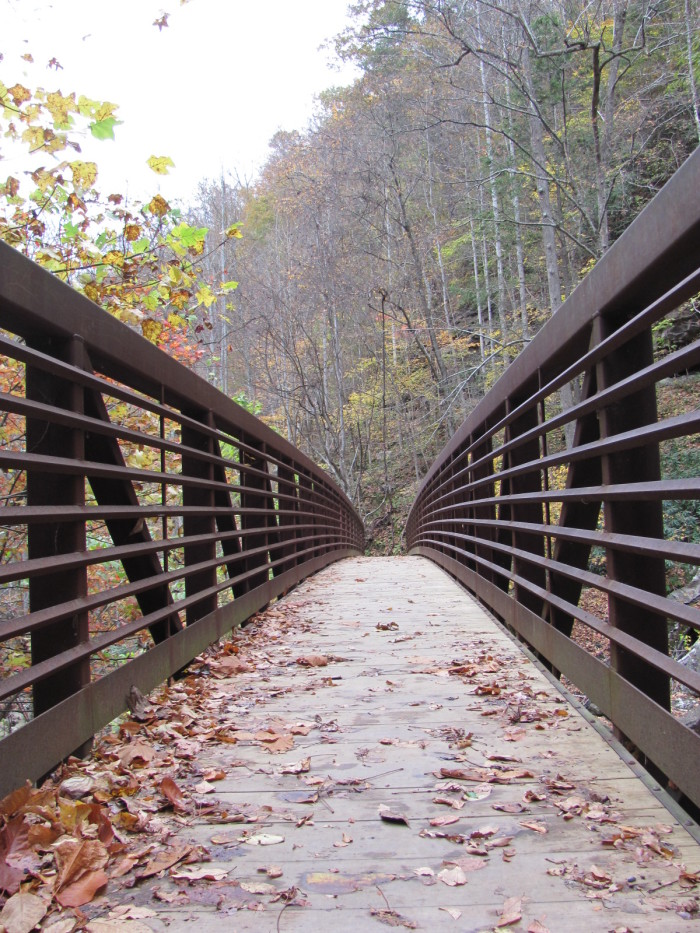 6) The Kaymoor Trail is another trail that follows along the New River in the Fayetteville area.