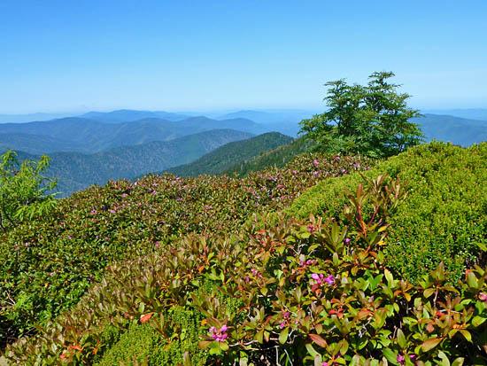 11. Mount Le Conte via Alum Cave Trail, Great Smoky Mountains