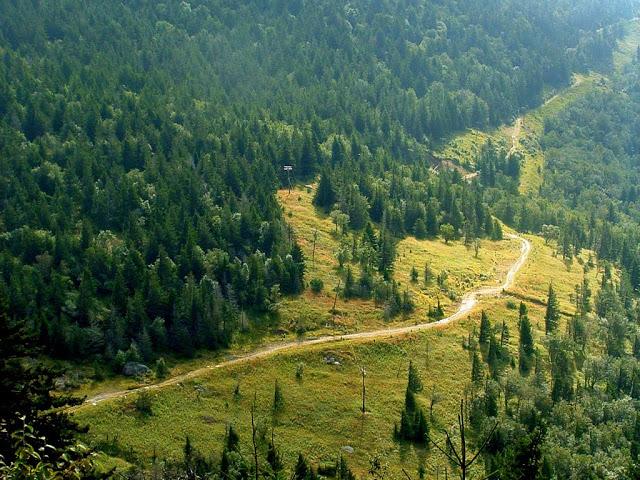 5. Old Mitchell Trail, Mount Mitchell