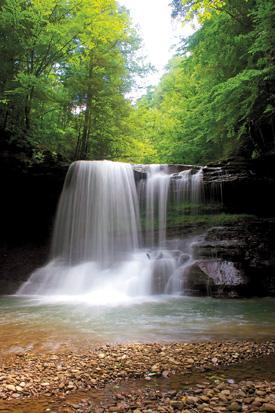 12) Peach Tree Falls, located near Naoma, WV.