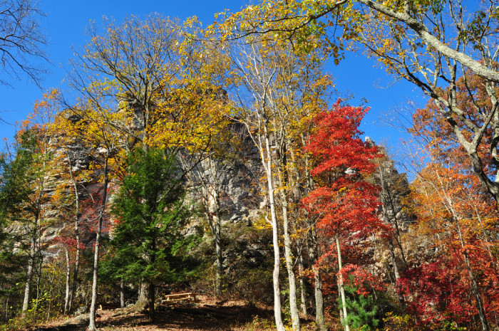 13) Pinnacle Rock State Park, located in Bramwell, WV.