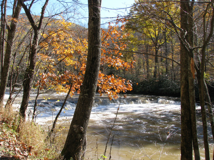 9) Whitaker Falls, located in Webster County, WV.