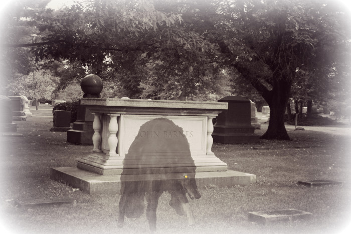 5. The Ghost Hound of Goshen