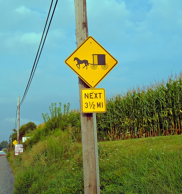 11. Pennsylvania has the highest Amish population in the world.