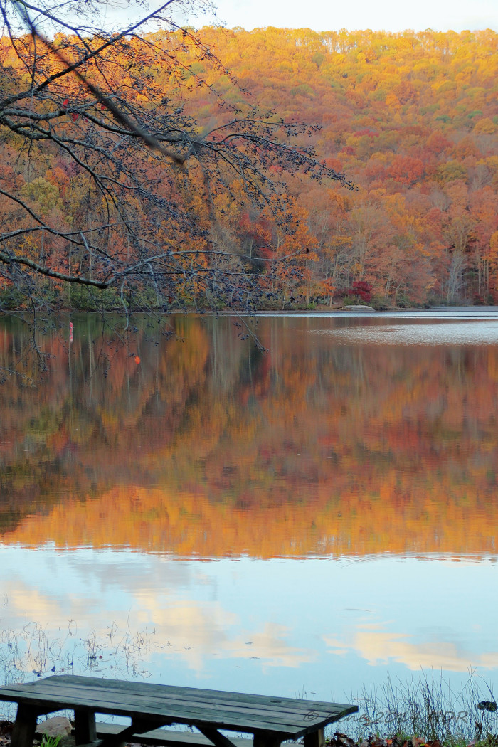 11) Plum Orchard Lake is a 202 acre reservoir in Fayette County, WV.