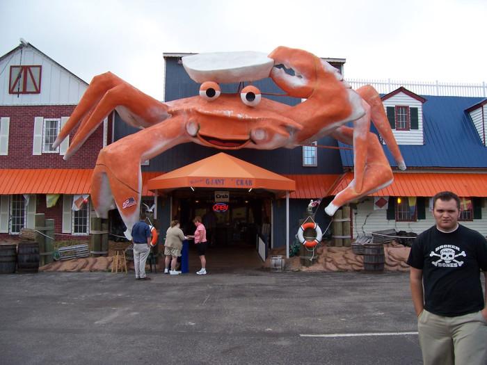 1. Mr. Crab