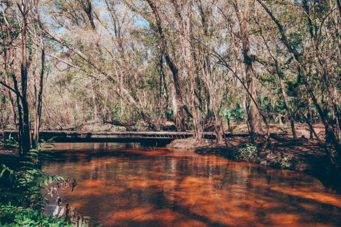 7. Little Manatee River State Park