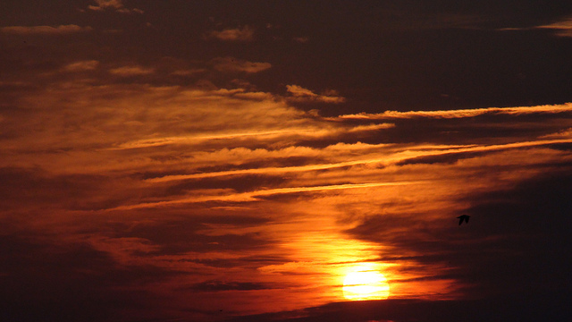 2. The rising sun sets the sky on fire.