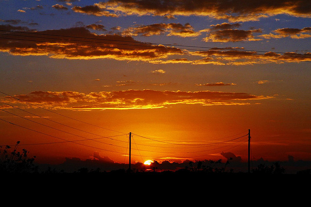 8) As the sun says goodnight, it lends a gorgeous orange tint to the vast Texas skies. Just one of the many reasons to love our state!