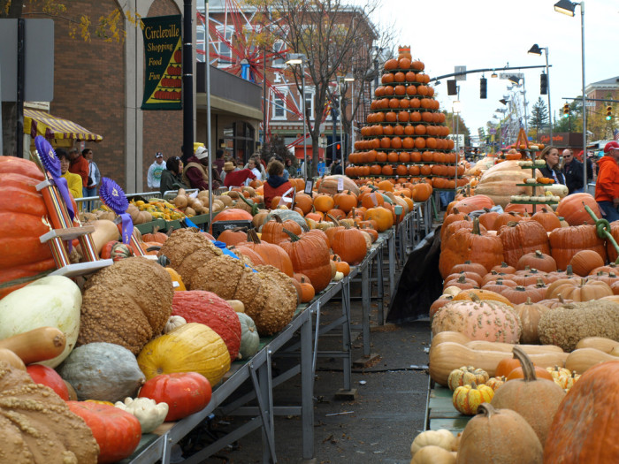 """5) Each fall you can experience what is literally known as """"The Greatest Free Show on Earth"""" at the Circleville Pumpkin Show."""