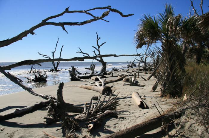2. Boneyard Beach