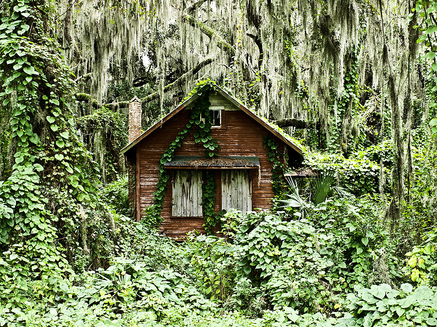 15 Abandoned Places In Florida That Are Haunting
