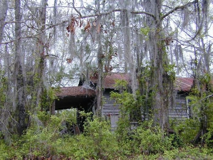 11. Left on its own somewhere in time, this building is barely holding on. As a side note, the Spanish moss is beautifully eerie.